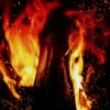 Close up shot of blaze fire flame texture background
